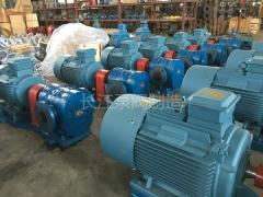 BW系列保温沥青齿轮泵 (11)