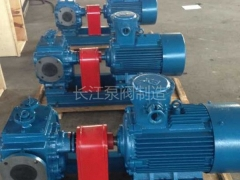 BW型保温沥青齿轮泵 (7)