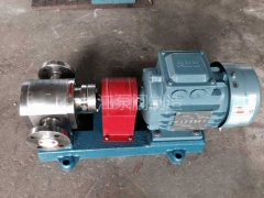 F系列全不锈钢防腐食品级齿轮泵报价 (3)