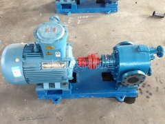 BW保温沥青齿轮泵厂家 (9)