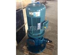 LYB型立式圆弧齿轮泵厂家 (2)