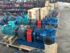 NYP系列高粘度齿轮泵 (11)
