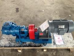 NYP系列高粘度齿轮泵 (4)