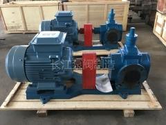 YCB圆弧齿轮泵 (9)