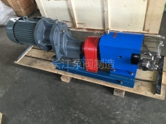 RP系列转子泵 (2)