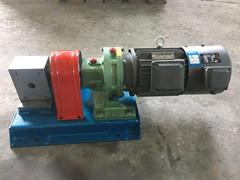 RT熔体泵精密计量泵口罩泵生产厂家